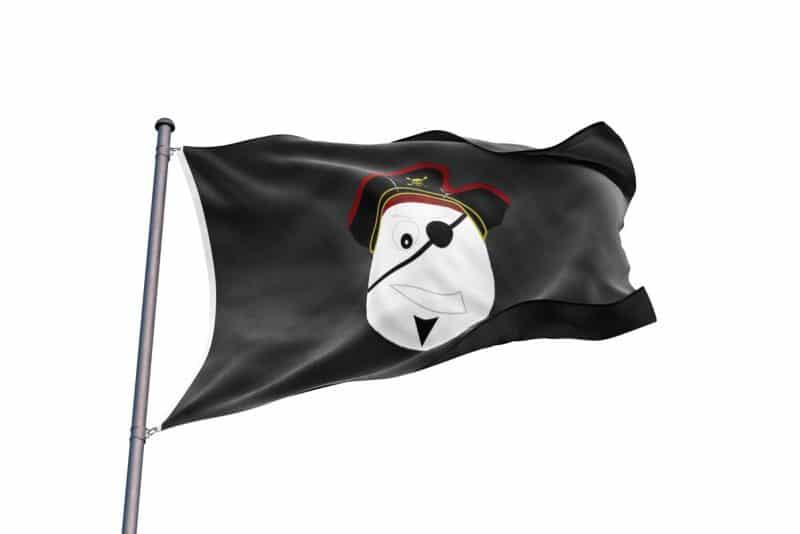 Drapeau de Pirate Enfant - Jolly Roger