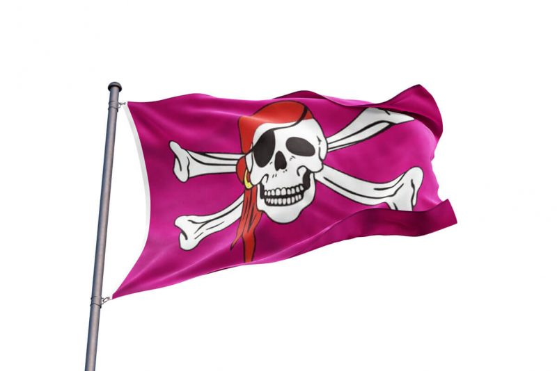 Drapeau Pirates Rose - Jolly Roger