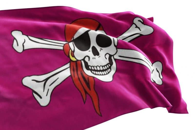 Pavillon Pirate Rose - Jolly Roger