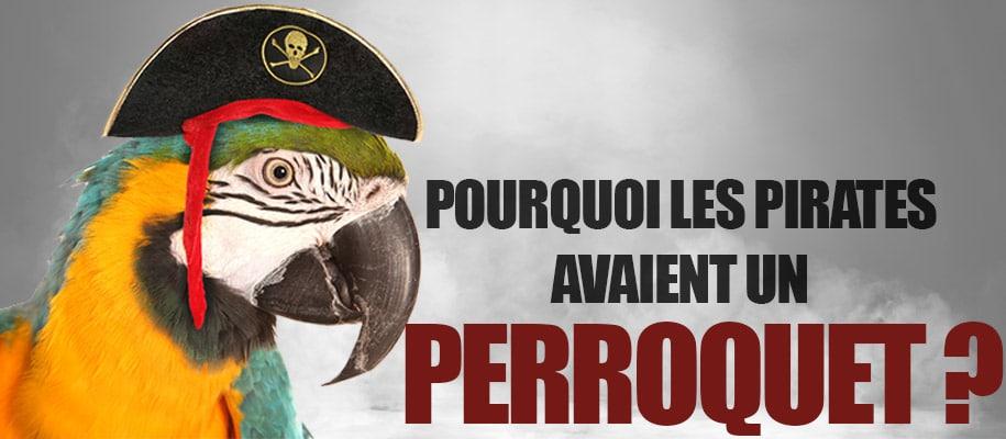 Pourquoi les pirates avaient un perroquet ?