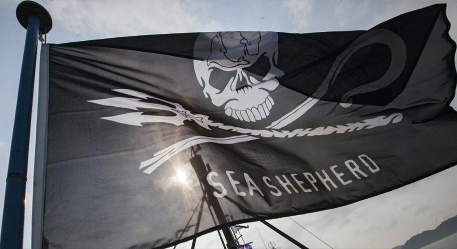 Drapeau Sea Shepherd logo