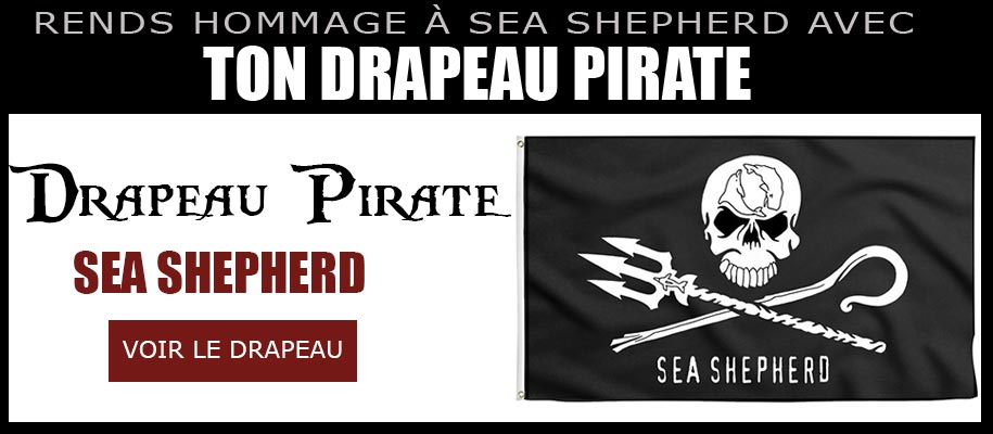 Jolly Roger Sea Shepherd Logo